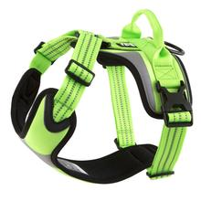 Hurtta Active Dazzle Dog Harness - Kiwi