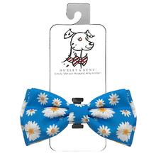 Huxley & Kent Dog Bow Tie Collar Attachment - Flower Child