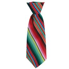 Huxley & Kent Long Tie Collar Attachment Dog Necktie - Serape