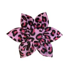 Huxley & Kent Pinwheel Dog and Cat Collar Attachment - Pink Leopard