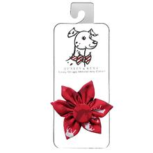 Huxley & Kent Pinwheel Holiday Dog and Cat Collar Attachment - Moose