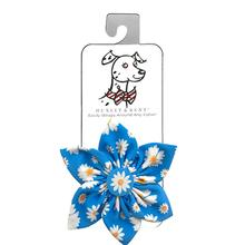 Huxley & Kent Pinwheel Dog and Cat Collar Attachment - Flower Child