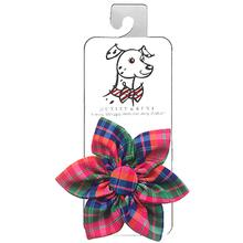 Huxley & Kent Pinwheel Pet Collar Attachment - Sweet Tart Madras