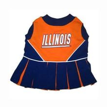 Illinois Cheerleader Dog Dress