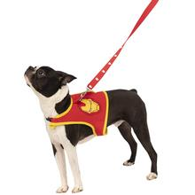 Marvel Iron Man Dog Harness and Leash Set
