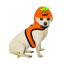 Jack-A-Lantern Dog Harness Costume