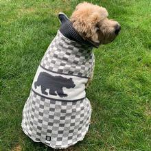 Jackson Fleece Lined Bear Dog Sweater - Gray/Cream