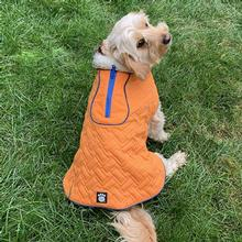 Ogunquit Quilted Dog Jacket by Petrageous - Orange