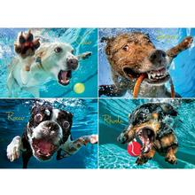 Underwater Dogs Puzzle for Humans - Pool Pawty