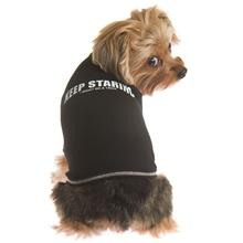 Keep Staring... Dog T-Shirt