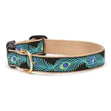 Peacock Dog Collar by Up Country