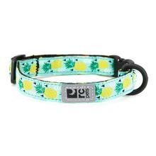Kitty Breakaway Cat Collar - Pineapple Parade
