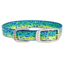 KOA Fish Dog Collar by Dublin Dog - Mahi Mahi