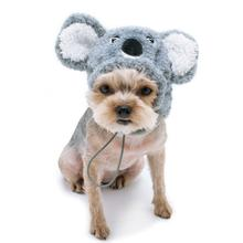 Koala Halloween Dog Hat by Dogo