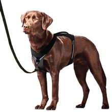 Kurgo Go-Tech Adventure Dog Harness - Black
