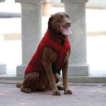 Kurgo Loft Reversible Dog Jacket - Chili Red and Dark Charcoal