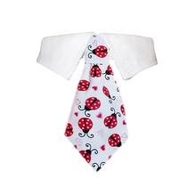 Lady Bug Dog Shirt Collar and Tie