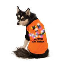 LED Halloween Dog T-Shirt by Rubie's Costumes