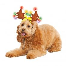 Light Up Reindeer Antlers Dog Hat