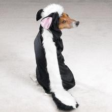Lil' Stinker Skunk Dog Halloween Costume