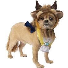 Beauty and the Beast Dog Costume Accessory Set - Beast