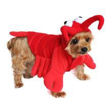 Lobster Dog Costume by Doggie Design