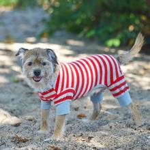 Lookin' Good Striped Dog Pajamas - Red