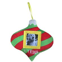 Lulubelles Picture Frame Ornament for Dogs - I Tried....