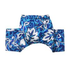 Malibu Dog Swim Trunks - Blue