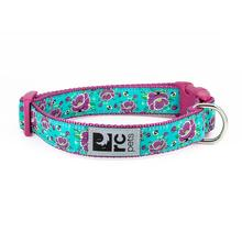 All the Buzz Adjustable Clip Dog Collar By RC Pet