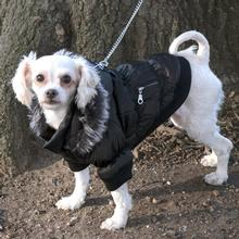 Pet Life Metallic Ski Parka Dog Coat - Black