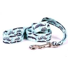 Moustaches and Stripes Dog Leash by Yellow Dog - Teal