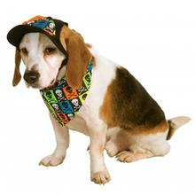 Neon Halloween Accessory Dog Costume