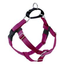 No-Pull Dog Harness Deluxe Training Package - Raspberry and Black