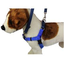No-Pull Dog Harness Deluxe Training Package - Royal Blue and Navy