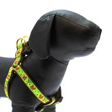 Nuts Dog Harness by Up Country