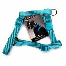Zack & Zoey Nylon Pet Harness - Bluebird