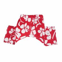 Okinawa Dog Swim Trunks - Red