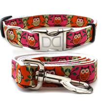 H'Owl Pink and Pumpkin Dog Collar and Leash Set by Diva Dog