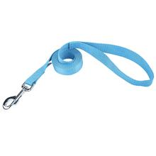 Parisian Pet Nylon Dog Leash - Light Blue