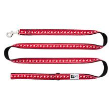 Pawesome Dog Leash by RC Pets
