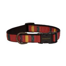 Pendleton Ranier National Park Hiker Dog Collar