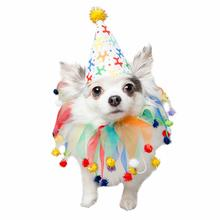 Pet Krewe Celebration Dog Hat & Collar Set
