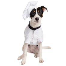 Pet Krewe Chef Uniform Costume for Dogs and Cats