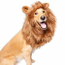 Pet Krewe Lion Mane Costume with Ears - Medium and Large Dogs