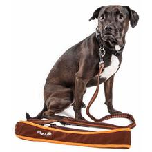 Pet Life Free-Fetcher Dog Leash - Brown