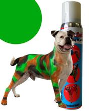 PetPaint Color Dog Hair Spray - Green
