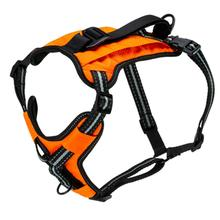 PetSafe Walk-Along Outdoor Dog Harness - Orange