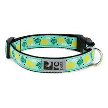Pineapple Parade Adjustable Clip Dog Collar