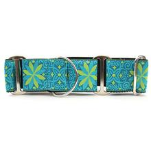 Pinwheel Wide Martingale Dog Collar by Diva Dog - Caribbean Blue